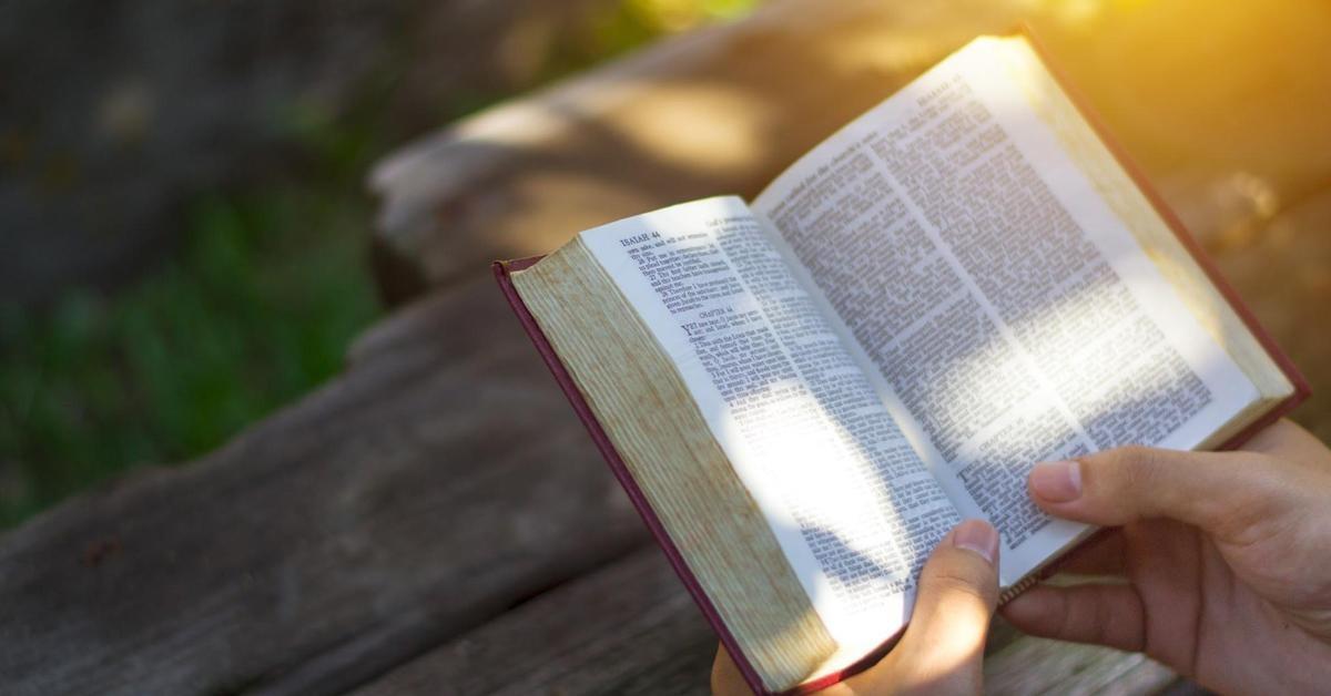 bibles gift idea