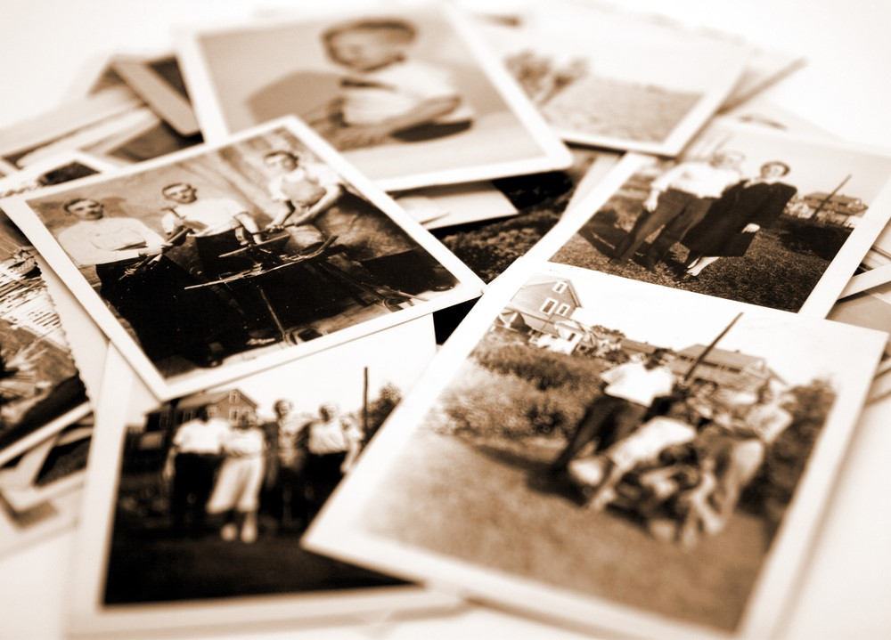 the family historian idea