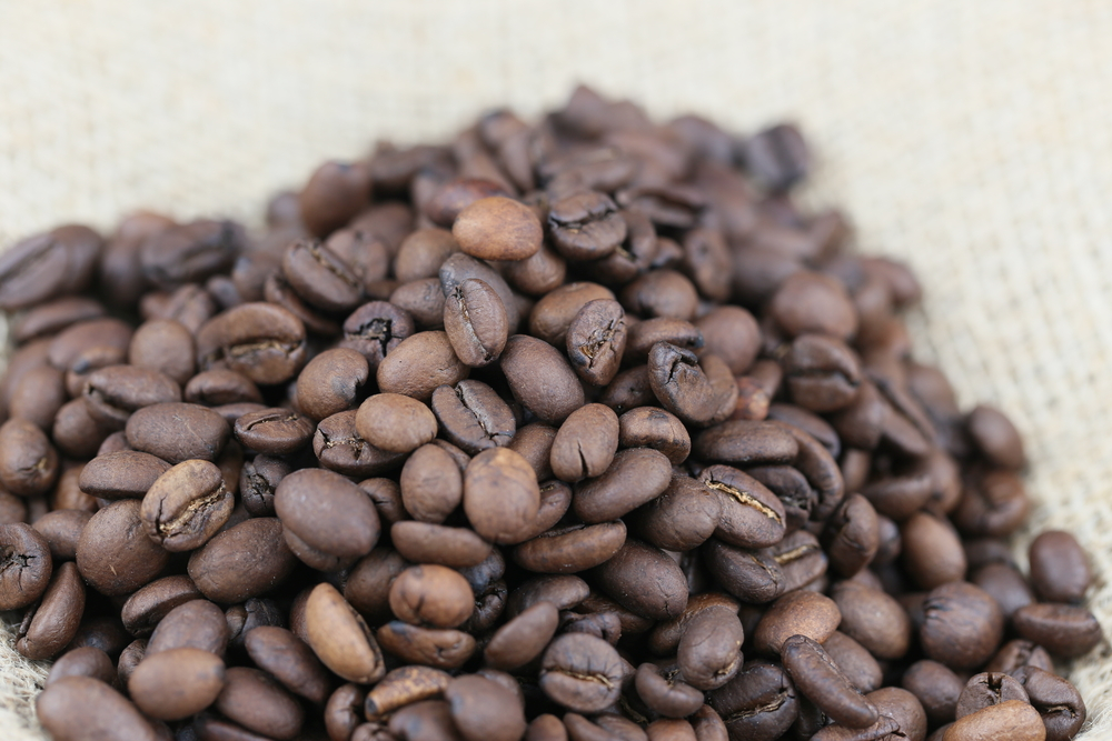 Coffee_ground_samplers