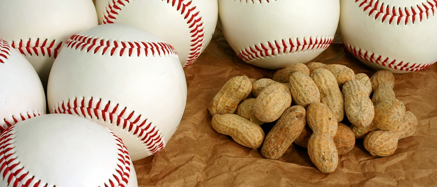 Fun Healthy Snack Ideas that Travel Well with Your Sports Team