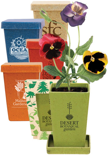 Wedding_Favors_Your_Guests_Will_actually_Love_-_flower_planters.jpg